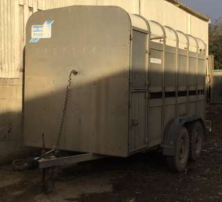 IFOR WILLIAMS 12ft CATTLE TRAILER