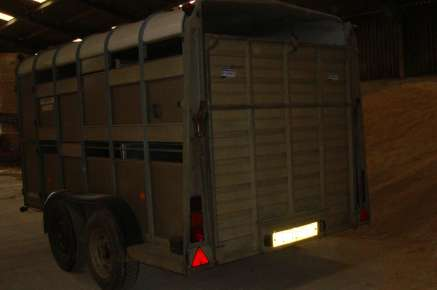 USED IFOR WILLIAMS CATTLE TRAILER