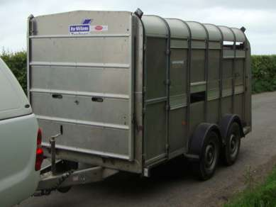 IFOR WILLIAMS12ftCATTLE TRAILER